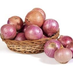 Onion / পেয়াঁজ